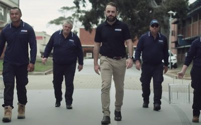 The Ultimate Guide to Pest Control in Adelaide